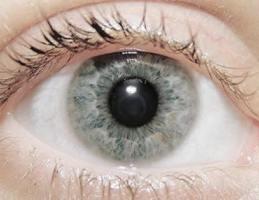 Как сделать проверку зрение