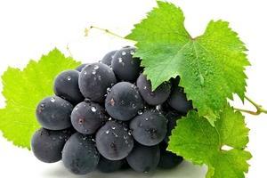 Сахарный диабет и виноградное вино